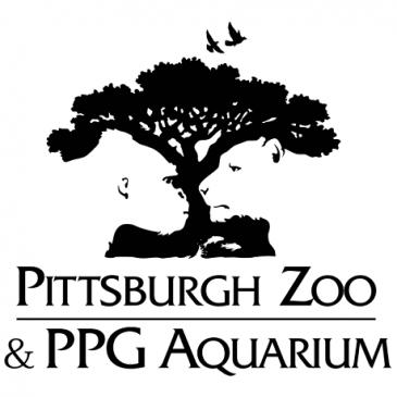 El mensaje subliminal de los logos